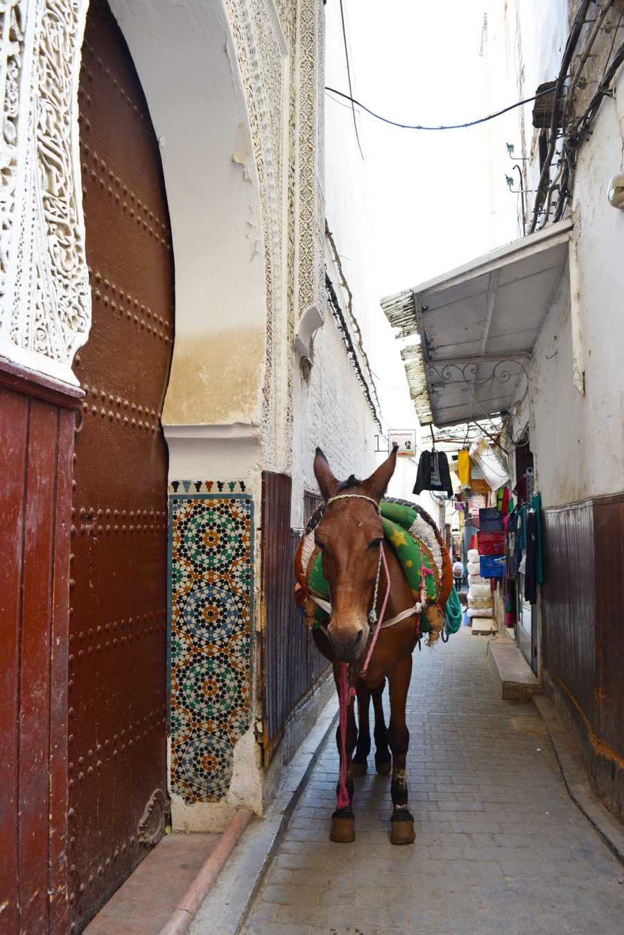 Tips for visiting Fez, Morocco | The Cheerful Wanderer